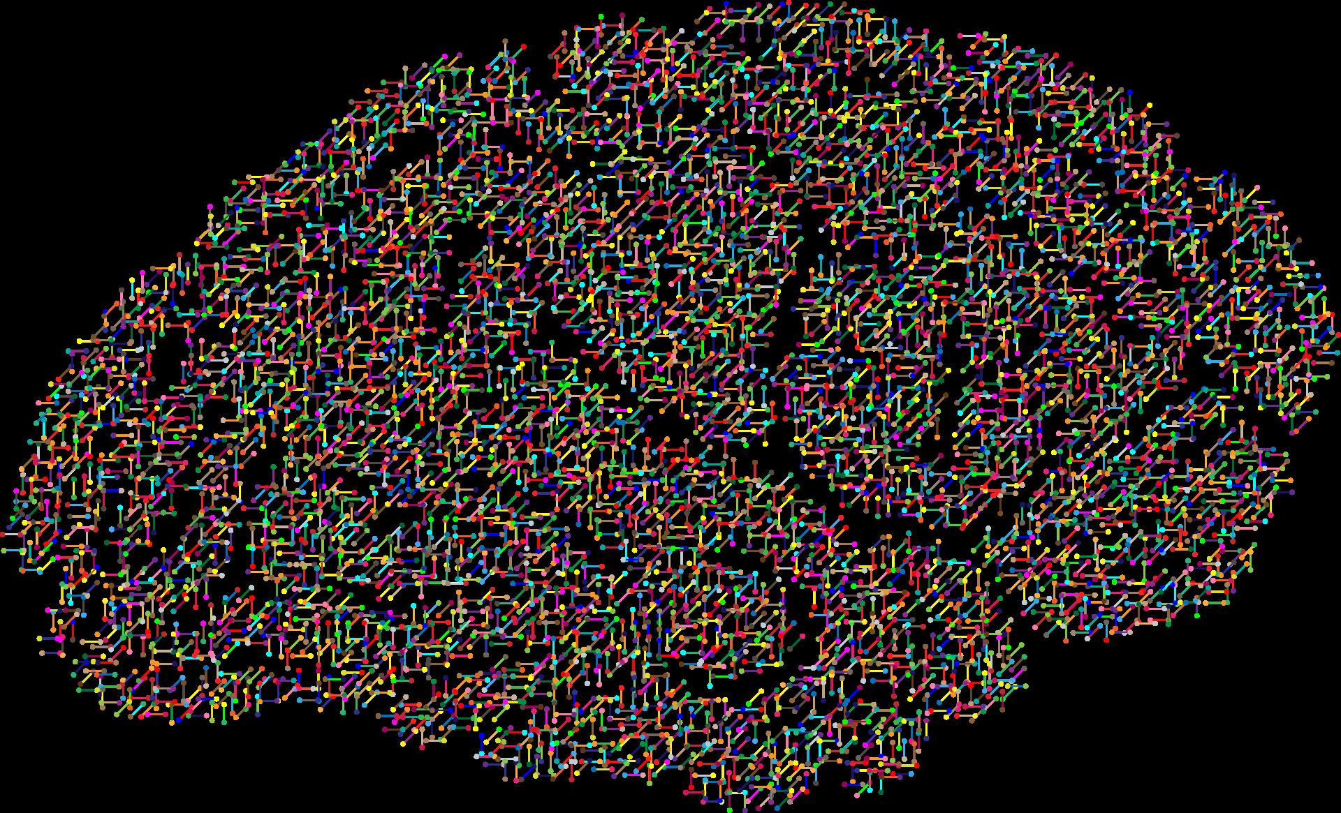 cranium-2099083